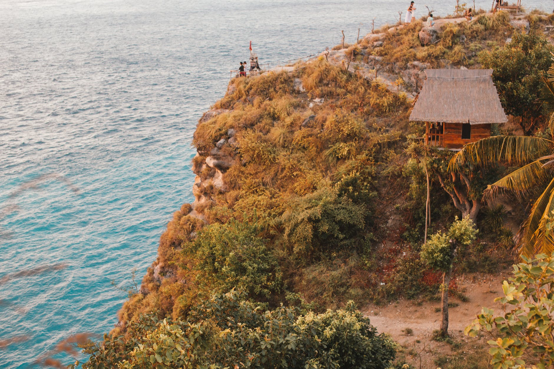 vacanze in Italia rocky coast with vegetation and treehouse
