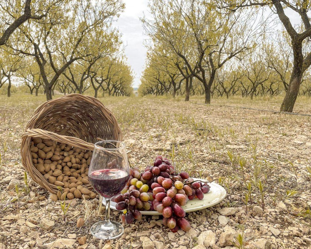esperienze d'autunno in Puglia